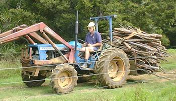 Stephan with a load of firewood on the tractor