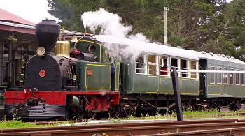Steam train at Kawakawa