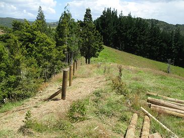 fencing begins at the top of the hill