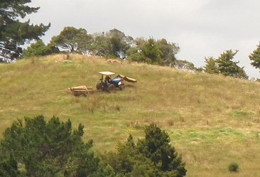 carting posts up the hill