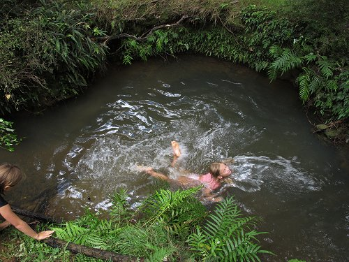 swimming in the stream