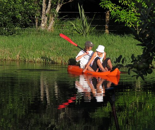 paddling in the pond