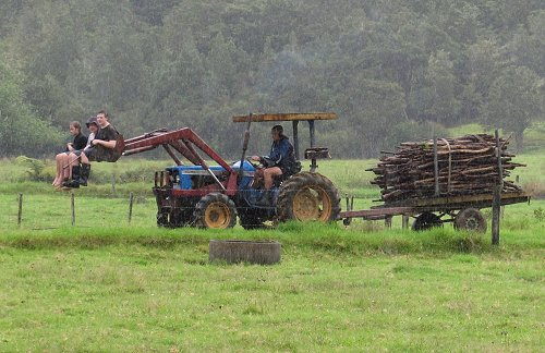 wet wood-gathers on the tractor