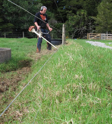 clearing grass from electric fencing