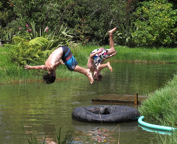 swimmers doing flips into the pond