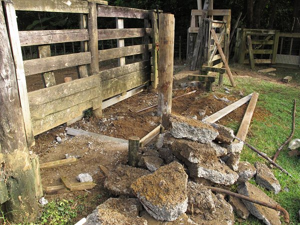 renovating the cattle yards