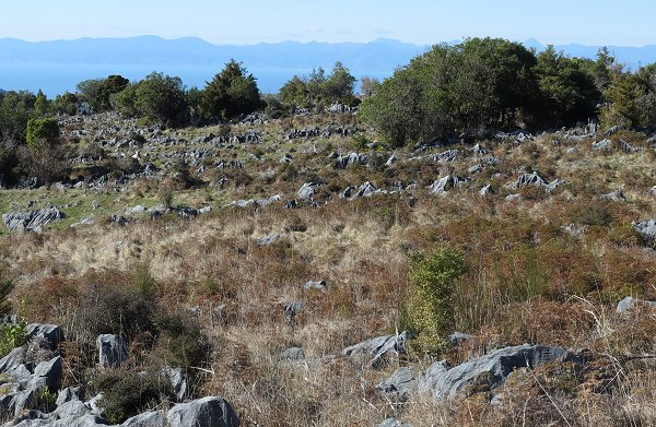rocks on Takaka hill