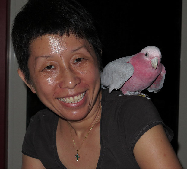 woman and Galah