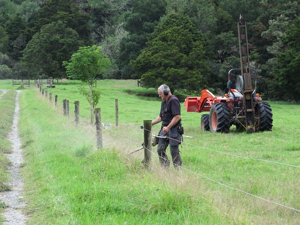 clearing under electric fencing