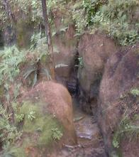 muddy gully in the bush