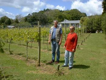 Stephan and Ruth among William's grape vines