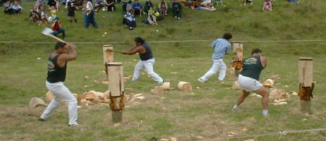 log chopping competition