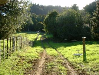 looking west down the lane to the north side of the farm